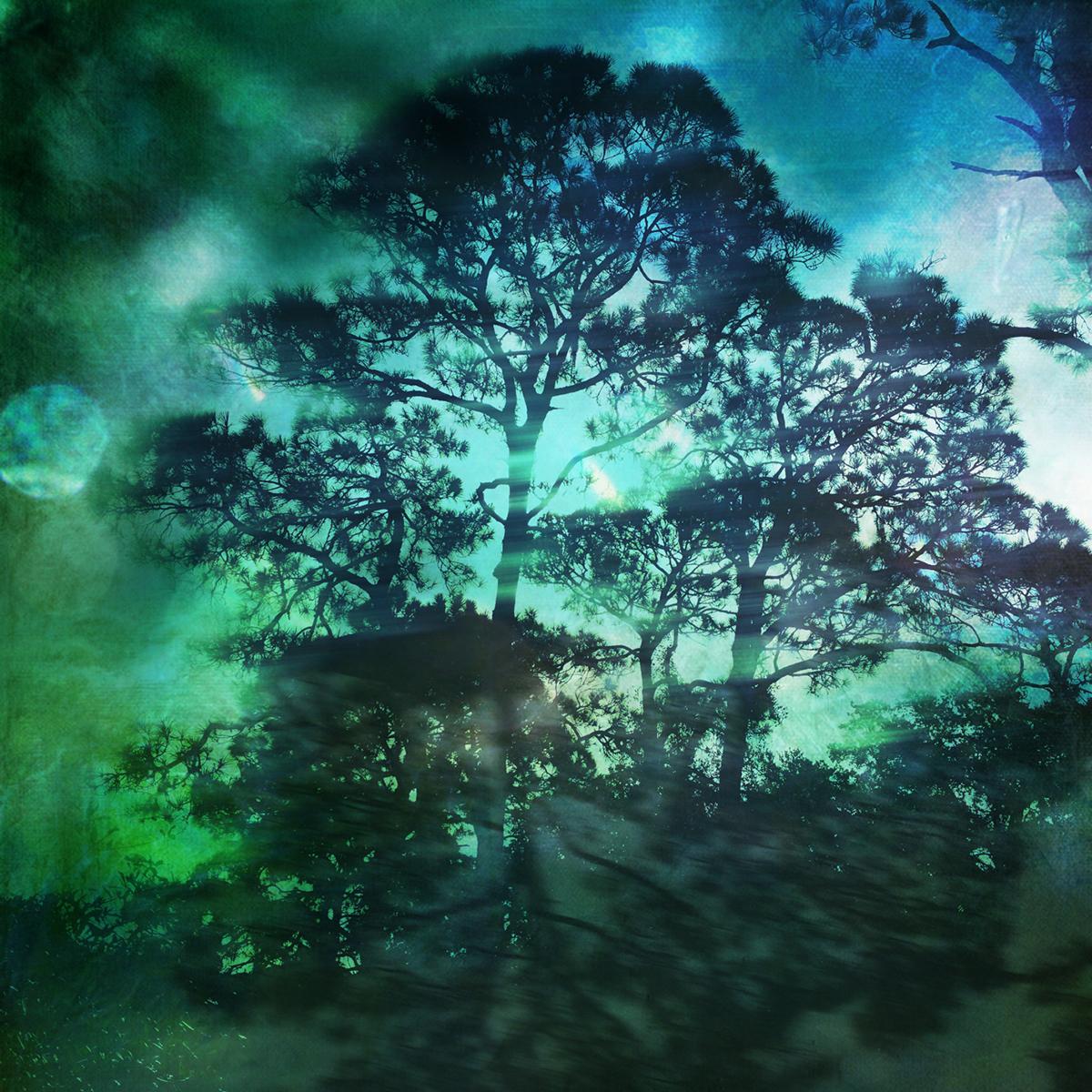 Tree-Series-Trinity