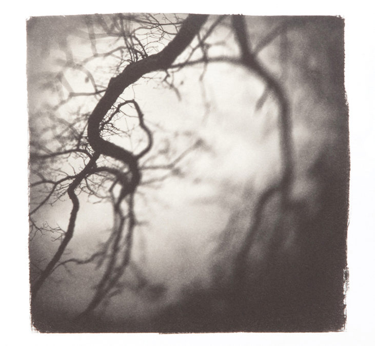 Fine Art Photography: Alternative Process