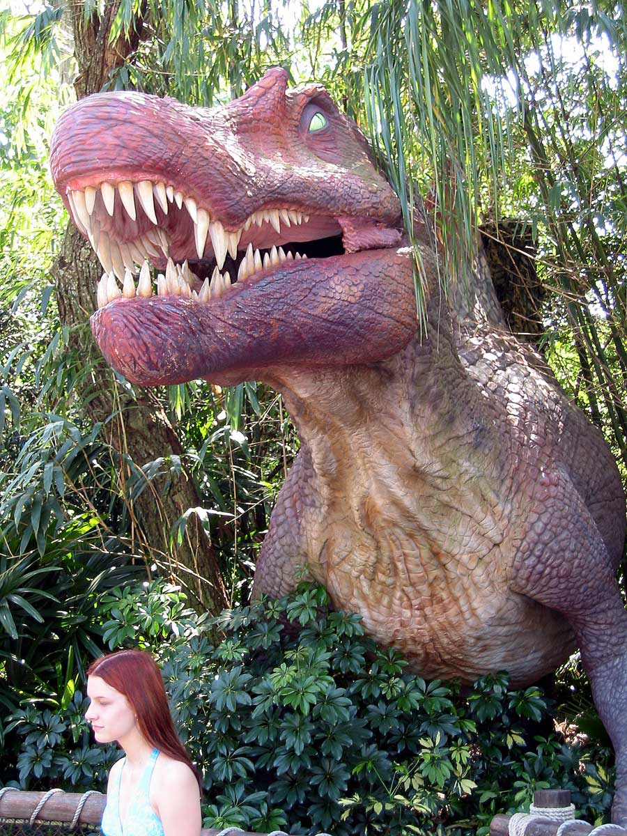 TRex meal
