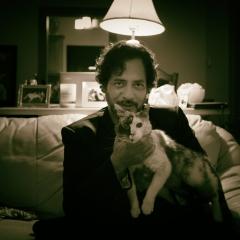 catmen series 10