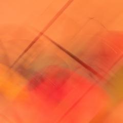 """Leonardo DaVinci # 3: 17"""" x 17"""""""