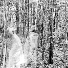 Ghosts of Childhood