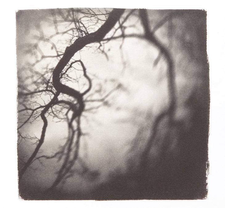 Fine Art Photography: Alternative Process