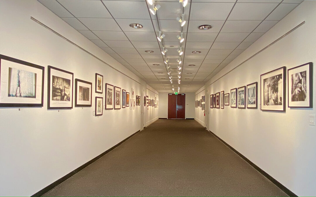 THE PHYSICAL EXHIBIT